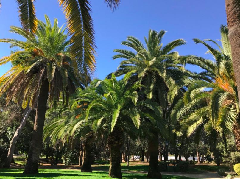 A Fantastic Park in La Eliana