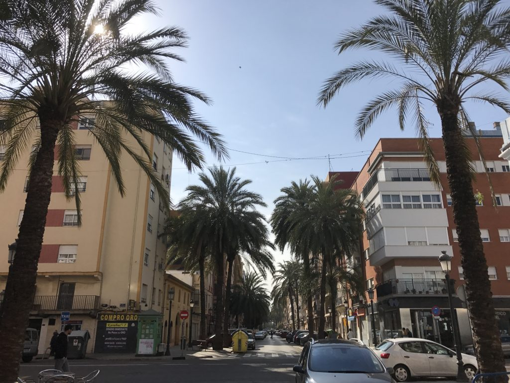 Calle Barraca in the Cabanyal is just one of the many palm and orange lined streets in Valencia.