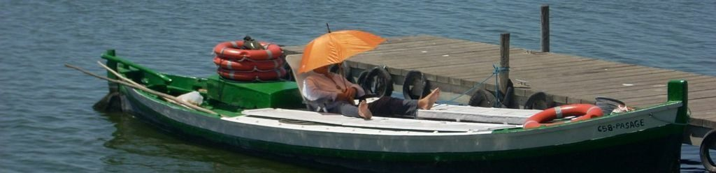 Relax on an Albufera Boat Trip From El Palmar