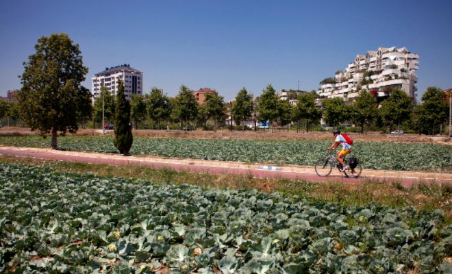 Cycle Paths Predominate in Valencia