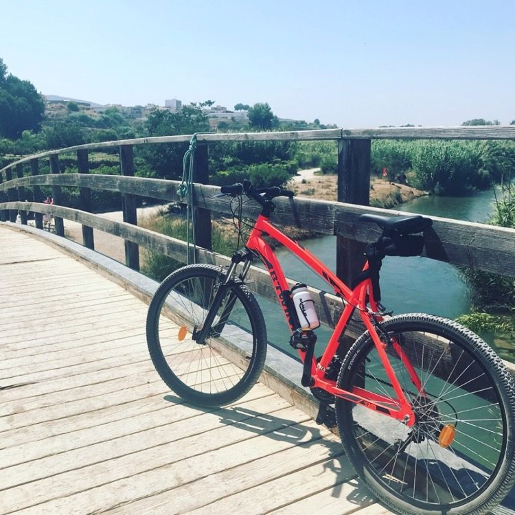 Biking in the Turia Park