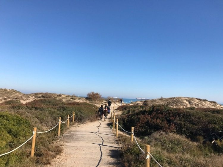 Walking through the protected sand dunes at El Saler