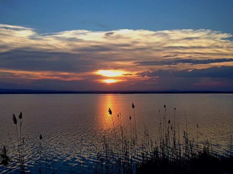 Sunset Over the Albufera