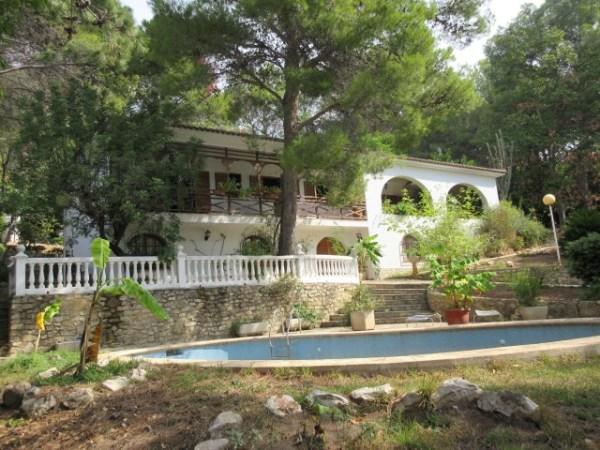 Picture of Jungle Villa close to Gandia